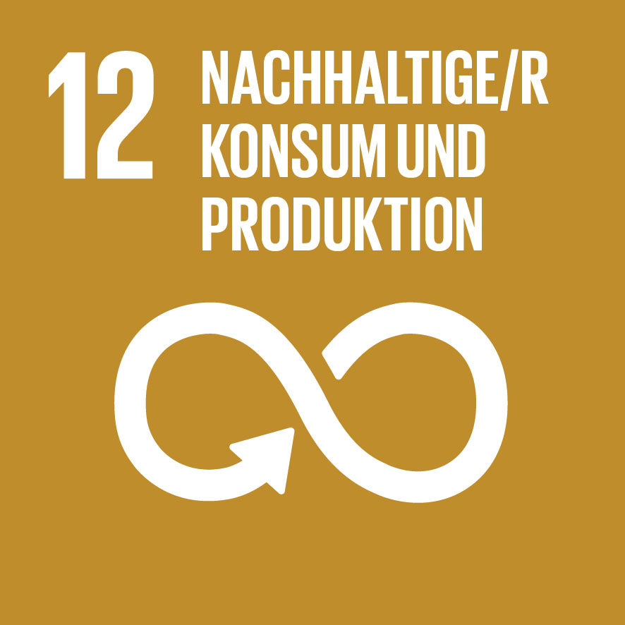 Sustainable Development Goals_icons-12